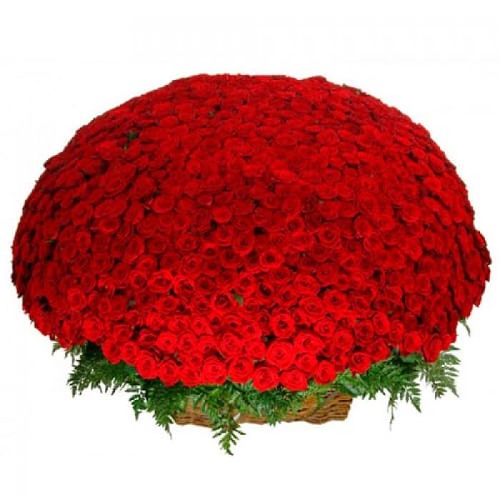 Корзина 1001 роза