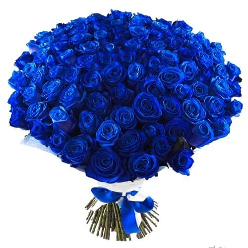 Букет Морской бриз - 101 синяя роза (Предзаказ 1 неделя)