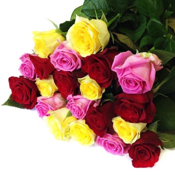 Букет из 19 разноцветных роз