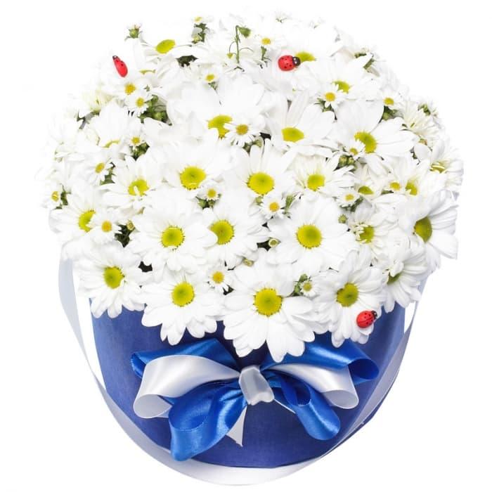 Композиция из кустовых хризантем в шляпной коробке