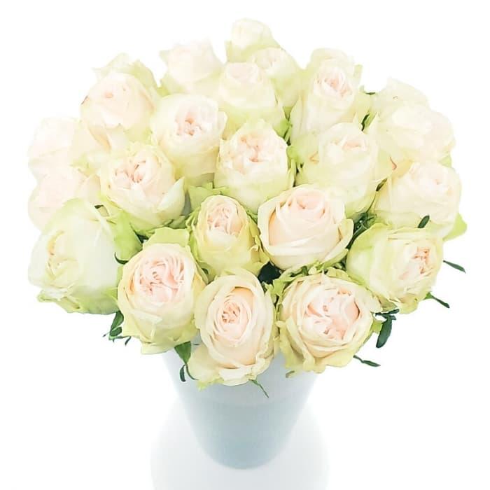 Букет из 25 пионовидных роз (Предзаказ 1 неделя)