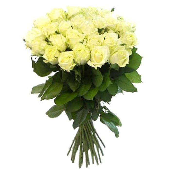19 длинных белых роз 70 см