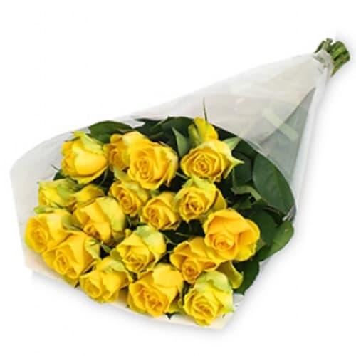 Акция! 25 желтых голландских роз
