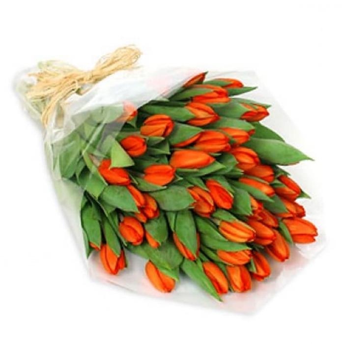 51 оранжевый тюльпан + Подарок!