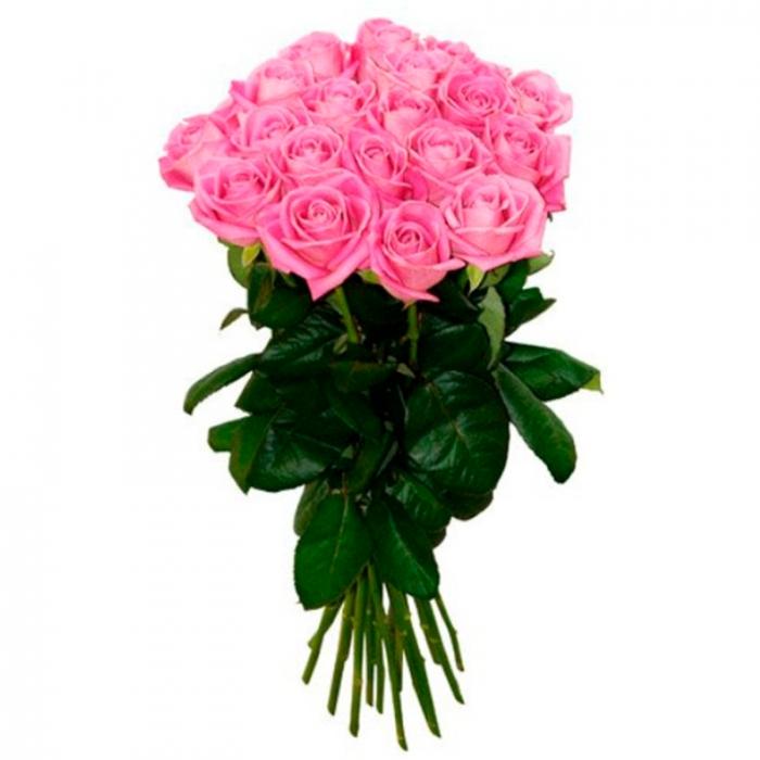 Букет из 15 розовых роз 50 см