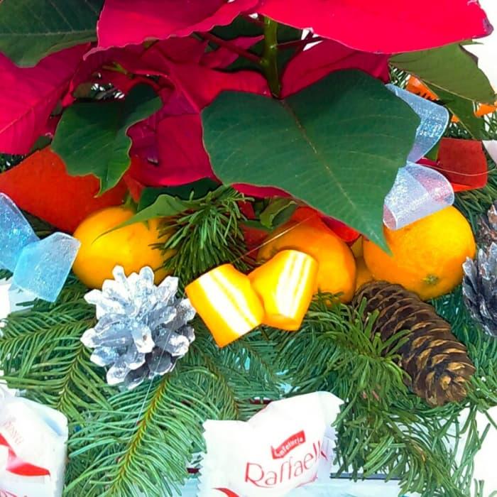 Новогодняя композиция Рождественская звезда (Предзаказ 1-2 дня)