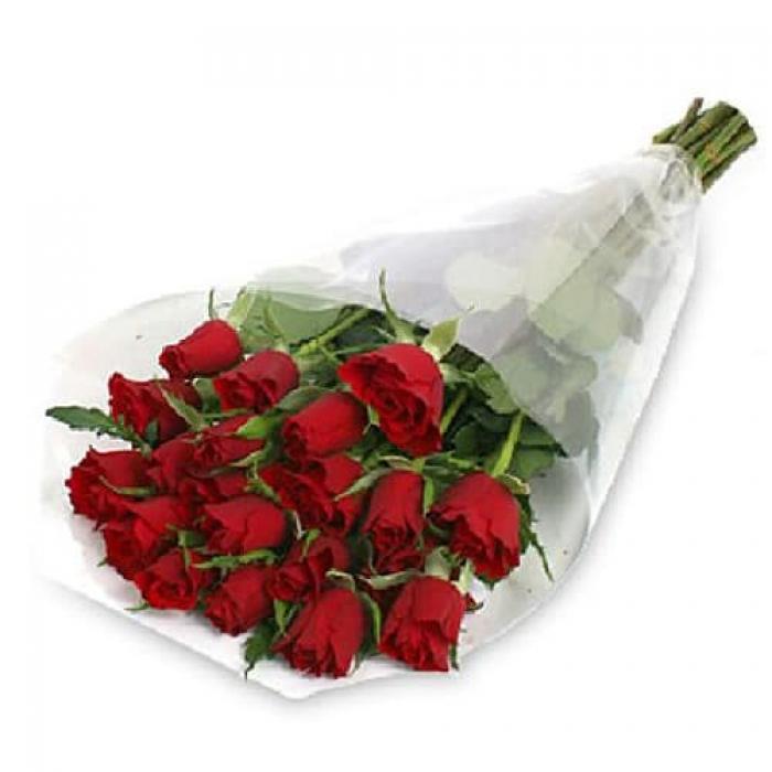 25 красных голландских роз 80-90см