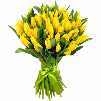 Акция! Букет из 25 желтых тюльпанов