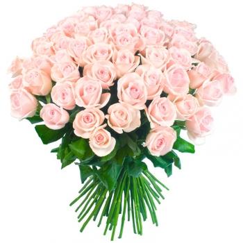 Букет из 51 нежно-розовых голландских роз Предзаказ