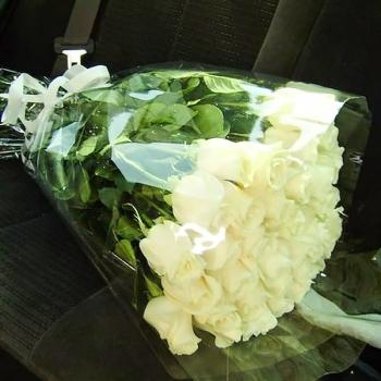 Букет из 25 роз 70 см + Подарок