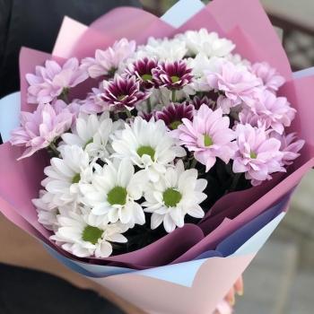 Букет из 5 веточек розовых хризантем