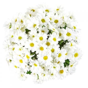 """Крафт-букет из 9 веток хризантем """"Цветочная поляна"""""""