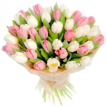 25 бело-розовых тюльпанов + подарок!