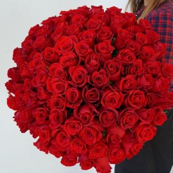 Шикарный букет из 101 красной розы 70 см