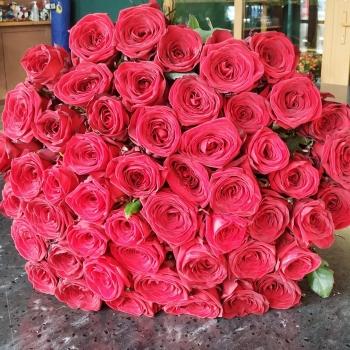 Акция!!! Букет из 51 красной розы 50 см