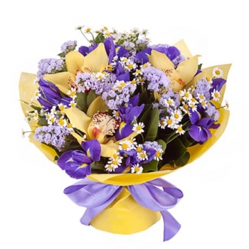 Очарование орхидеи