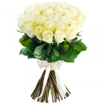 Букет из 25 белых роз + подушка
