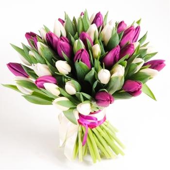 Букет из 25 белых и фиолетовых тюльпанов