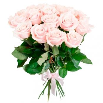 25 нежно-розовых голландских роз