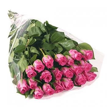 25 розовых голландских роз