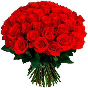Букет из 59 красных роз